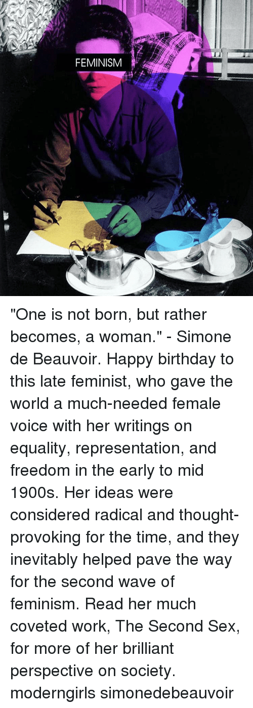 the controversy and radicalism of the second wave of feminism Feminism & radicalism of jeannette even among the suffragists of feminism's first wave the 1960s in the middle of feminism's second wave.