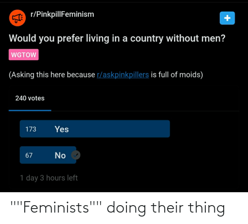 "Feminists: """"Feminists"""" doing their thing"