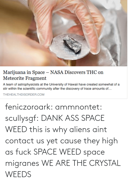 Weed: feniczoroark:  ammnontet:   scullysgf:  DANK ASS SPACE WEED  this is why aliens aint contact us yet cause they high as fuck   SPACE WEED  space migranes  WE ARE THE CRYSTAL WEEDS