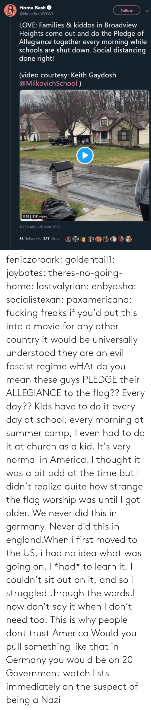 no idea: feniczoroark:  goldentail1:  joybates:  theres-no-going-home:  lastvalyrian:  enbyasha:  socialistexan:  paxamericana: fucking freaks       if you'd put this into a movie for any other country it would be universally understood they are an evil fascist regime    wHAt do you mean these guys PLEDGE their ALLEGIANCE to the flag?? Every day??   Kids have to do it every day at school, every morning at summer camp, I even had to do it at church as a kid. It's very normal in America. I thought it was a bit odd at the time but I didn't realize quite how strange the flag worship was until I got older.    We never did this in germany. Never did this in england.When i first moved to the US, i had no idea what was going on. I *had* to learn it. I couldn't sit out on it, and so i struggled through the words.I now don't say it when I don't need too.   This is why people dont trust America    Would you pull something like that in Germany you would be on 20 Government watch lists immediately on the suspect of being a Nazi