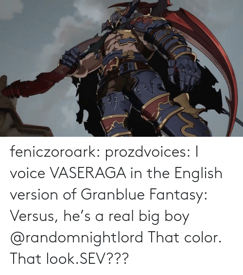 Voice: feniczoroark:  prozdvoices:  I voice VASERAGA in the English version of Granblue Fantasy: Versus, he's a real big boy     @randomnightlord    That color. That look.SEV???