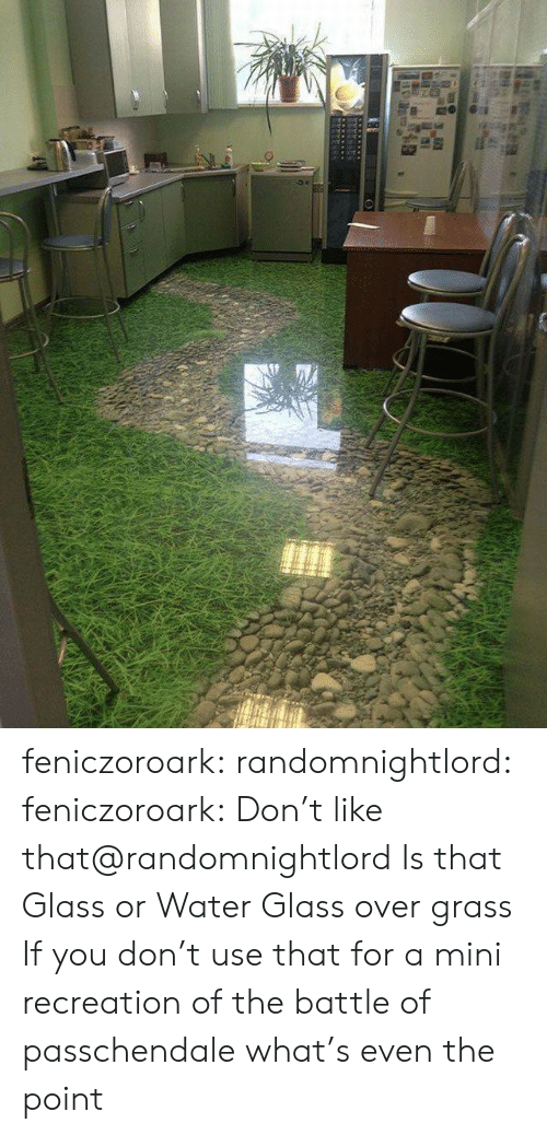 the point: feniczoroark:  randomnightlord:  feniczoroark:  Don't like that@randomnightlord   Is that Glass or Water  Glass over grass    If you don't use that for a mini recreation of the battle of passchendale what's even the point