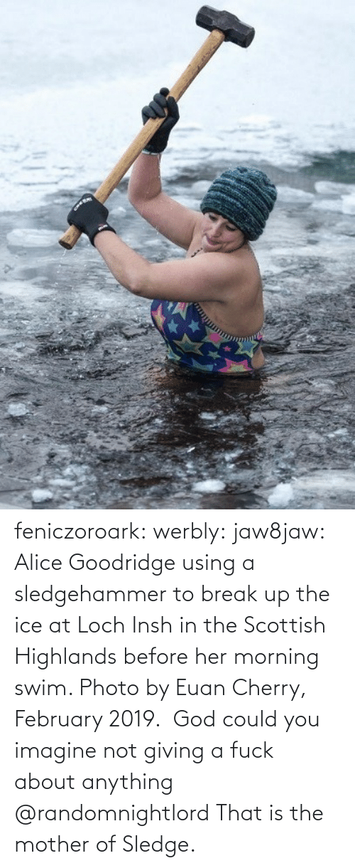 Mother Of: feniczoroark:  werbly:  jaw8jaw: Alice Goodridge using a sledgehammer to break up the ice at Loch Insh in the Scottish Highlands before her morning swim. Photo by Euan Cherry, February 2019.   God could you imagine not giving a fuck about anything    @randomnightlord    That is the mother of Sledge.
