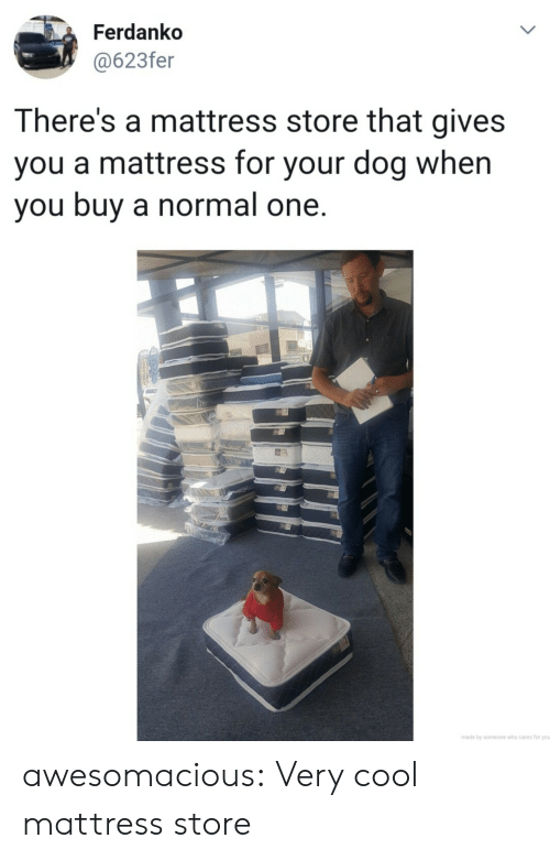 Mattress: Ferdanko  @623fer  LL  There's a mattress store that gives  you a mattress for your dog when  you buy a normal one.  made by someone who cares for you  > awesomacious:  Very cool mattress store