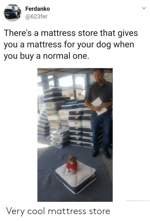 Mattress: Ferdanko  @623fer  LL  There's a mattress store that gives  you a mattress for your dog when  you buy a normal one.  made by someone who cares for you  > Very cool mattress store