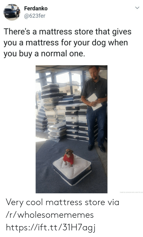 Mattress: Ferdanko  @623fer  LL  There's a mattress store that gives  you a mattress for your dog when  you buy a normal one.  made by someone who cares for you  > Very cool mattress store via /r/wholesomememes https://ift.tt/31H7agj