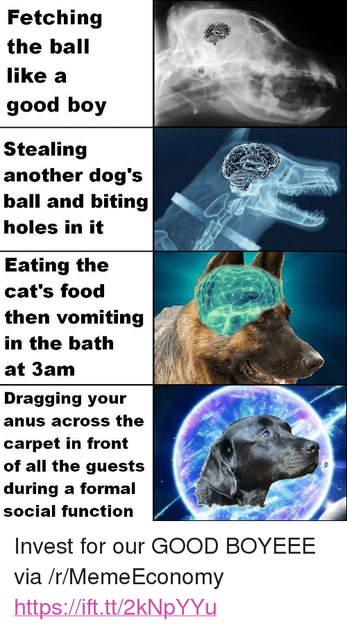 """Cats, Dogs, and Food: Fetching  the ball  like a  good boy  Stealing  another dog's  ball and biting  holes in it  Eating the  cat's food  then vomiting  in the bath  at 3am  Dragging your  anus across the  carpet in front  of all the guests  during a formal  social function <p>Invest for our GOOD BOYEEE via /r/MemeEconomy <a href=""""https://ift.tt/2kNpYYu"""">https://ift.tt/2kNpYYu</a></p>"""