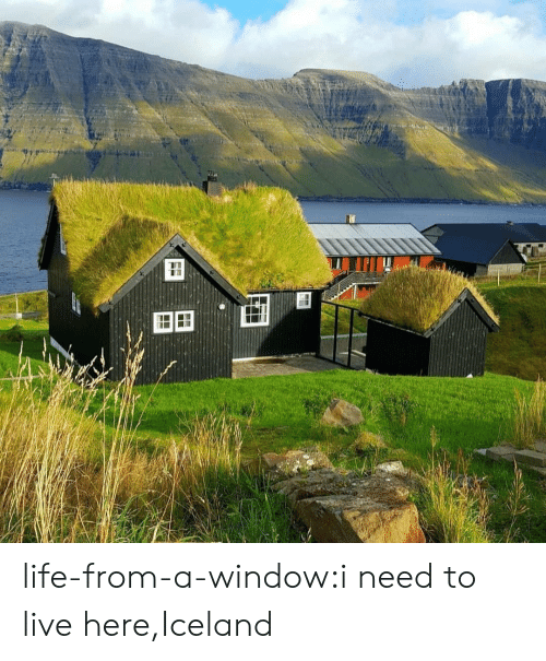 Iceland: FF life-from-a-window:i need to live here,Iceland