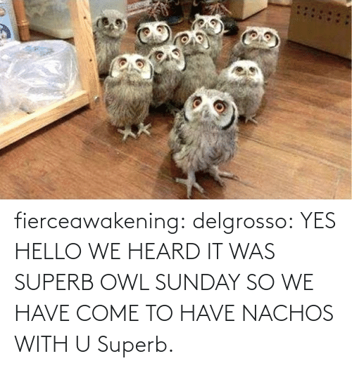 Come To: fierceawakening:  delgrosso: YES HELLO WE HEARD IT WAS SUPERB OWL SUNDAY SO WE HAVE COME TO HAVE NACHOS WITH U Superb.