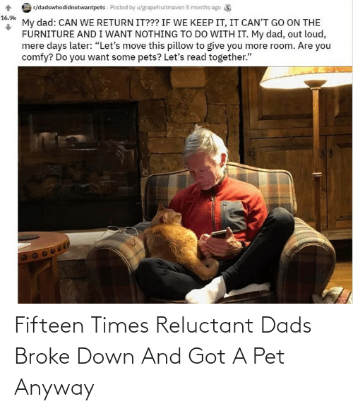pet: Fifteen Times Reluctant Dads Broke Down And Got A Pet Anyway
