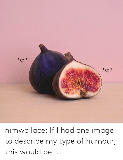 humour: Fig 1  Fig 2 nimwallace: If I had one image to describe my type of humour, this would be it.