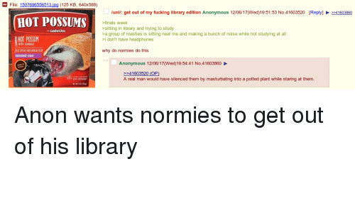 4chan, Finals, and Fucking: - File: 1507696556513 jpg (125 KB, 640x588)  /uni: get out of my fucking library edition Anonymous 12/06/17(Wed)19:51:53 No.41603520  [Reply]  41603860  HOT POSSUMS  finals week  sitting in library and trying to study  a group of roasties is sitting near me and making a bunch of noise while not studying at al  i don't have headphones  sandwichos  HOT POSSUM  WITH GARBAG  why do normies do this  seasoned crust  Anonymous 12/06/17(Wed)19:54:41 No.41603860  -41603520 (OP)  A real man would have silenced them by masturbating into a potted plant while staring at them.