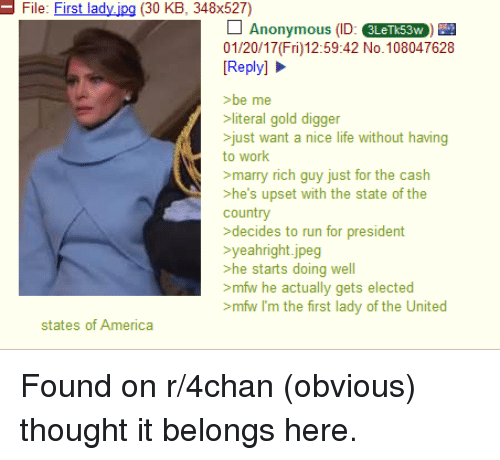 4chan, America, and Gold Digger: File: First lady.ipg (30 KB, 348x527)  Anonymous (ID: SLerks3w)  01/20/17 (Fri)12:59:42 No. 108047628  Reply]  >be me  >literal gold digger  just want a nice life without having  to work  >marry rich guy just for the cash  >he's upset with the state of the  country  >decides to run for president  yeahright.jpeg  he starts doing well  mfw he actually gets elected  >mfw I'm the first lady of the United  states of America