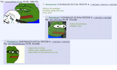 anime rape: File: maxresdefault 20.jpg (500 KB, 1280x720)  Anonymous 11/26/16(Sat)23:08:21 No.76675179  2276675464 eeZ6STS21s  >Nature documentary  >Predator going after prey  Prey wins  Anonymous 11/26/16(Sat)23:10:26 No. 76675230  2 76675428 ezz6676898  File: IMG 6070  png (96 KB, 241x228)  >nature documentary  animals mate  Anonymous 11/26/16(Sat)23:14:07 No. 76675336  2ez66zs081 eeze675760  File: 1471338262365  nature documentary  animal rapes another animal  sister bites her lip and looks at you