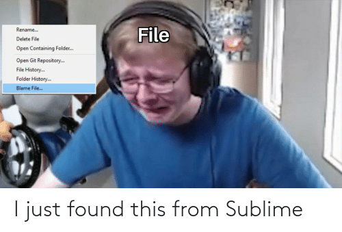 Sublime: File  Rename..  Delete File  Open Containing Folder..  Open Git Repository.  File History.  Folder History..  Blame File.. I just found this from Sublime