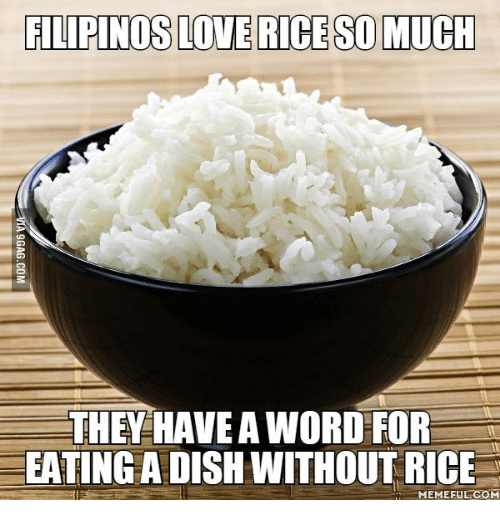 Rice Meme: FILIPINOS LOVE RICE SO MUCH  THEY HAVEAWORD FOR  EATINGADISHWITHOUT RICE  MEMEFUL COM