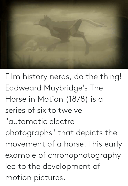 """the thing: Film history nerds, do the thing! Eadweard Muybridge's The Horse in Motion (1878) is a series of six to twelve """"automatic electro-photographs"""" that depicts the movement of a horse. This early example of chronophotography led to the development of motion pictures."""