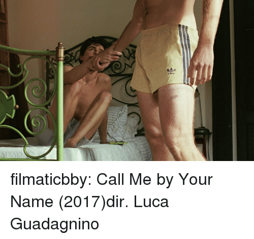 luca: filmaticbby: Call Me by Your Name (2017)dir. Luca Guadagnino