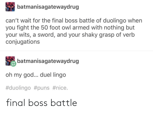 Final boss: final boss battle