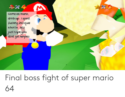 Final boss: Final boss fight of super mario 64