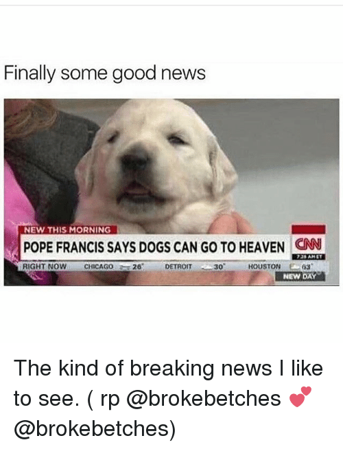 Chicago, cnn.com, and Detroit: Finally some good news  NEW THIS MORNING  POPE FRANCIS SAYS DOGs CAN Go To HEAVEN CNN  RIGHT NOW  CHICAGO  26 DETROIT 30 HOUSTON  63  NEW DAY The kind of breaking news I like to see. ( rp @brokebetches 💕 @brokebetches)
