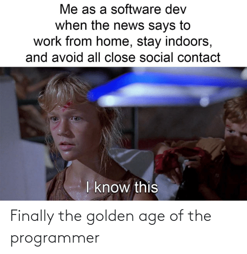 Golden Age, Finally, and Programmer: Finally the golden age of the programmer
