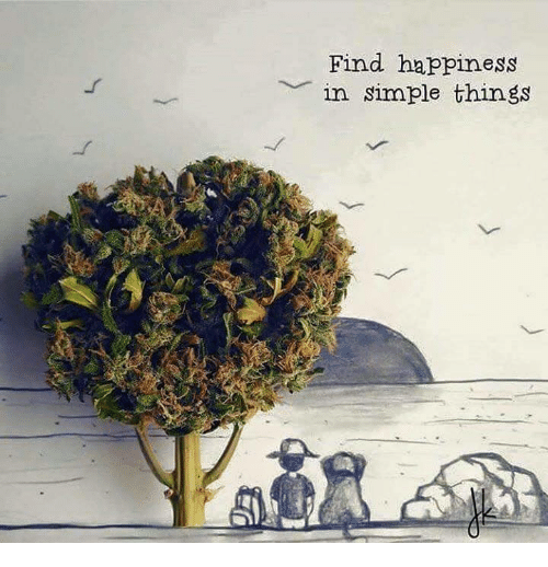 Happiness In: Find happiness  in simple things