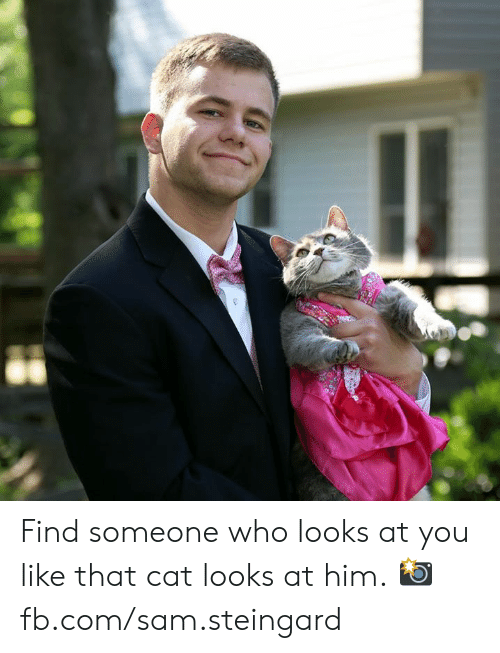 fb.com: Find someone who looks at you like that cat looks at him.  📸 fb.com/sam.steingard