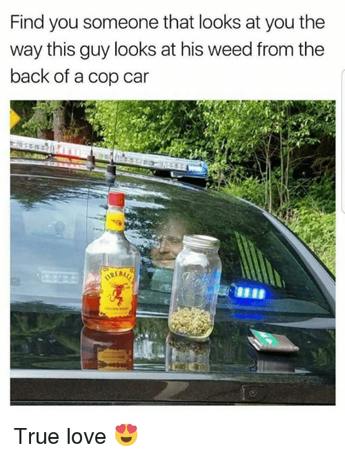 Cars, Love, and Memes: Find you someone that looks at you the  way this guy looks at his weed from the  back of a cop car True love 😍