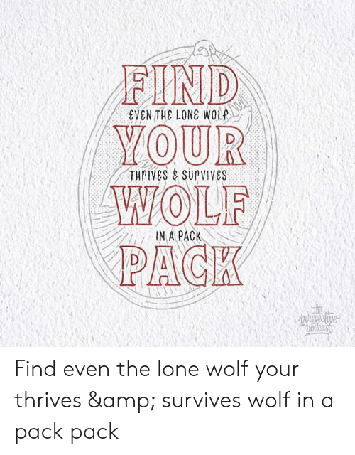 wolf pack: FIND  YOUR  WOLF  PACK  EVEN THE LONE WOLP  THPIVES&SUPVIVES  IN A PACK  reraspeolive  pocienst Find even the lone wolf your thrives & survives wolf in a pack pack