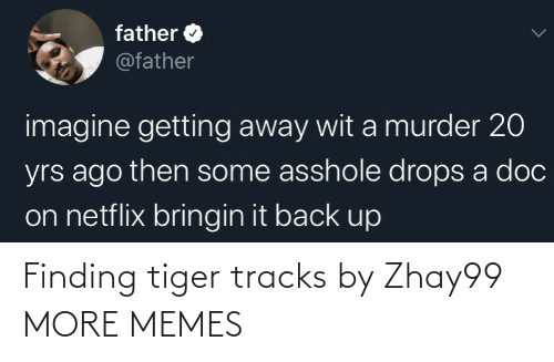 Finding: Finding tiger tracks by Zhay99 MORE MEMES
