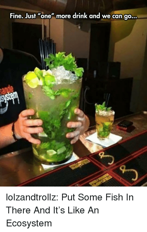 """Just One More: Fine. Just """"one"""" more drink and we can go.  .. lolzandtrollz:  Put Some Fish In There And It's Like An Ecosystem"""