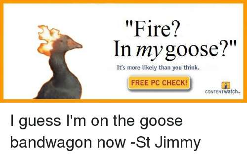 "Fire, Free, and Guess: ""Fire?  In my goose?""  It's more likely than you think.  FREE PC CHECK!  CONTENT Watch I guess I'm on the goose bandwagon now -St Jimmy"