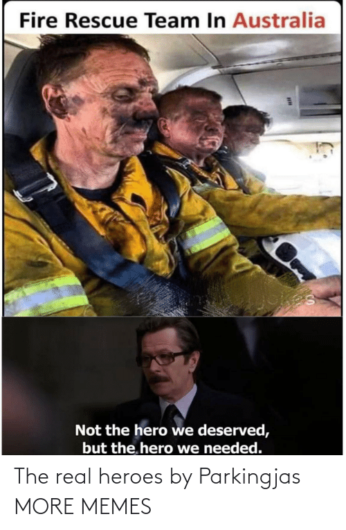 deserved: Fire Rescue Team In Australia  Not the hero we deserved,  but the. hero we needed. The real heroes by Parkingjas MORE MEMES