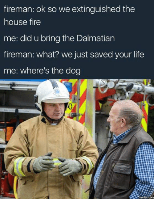 Fire, Life, and Memes: fireman: ok so we extinguished the  house fire  me: did u bring the Dalmatian  fireman: what? we just saved your life  me: where's the dog
