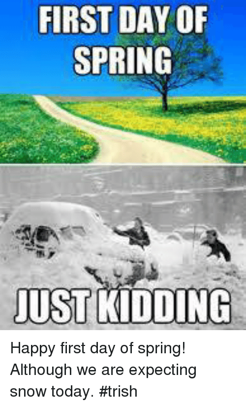 Memes, Happy, and Kids: FIRST DAY OF  SPRING  JUST KIDDING Happy first day of spring! Although we are expecting snow today. #trish