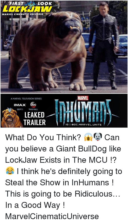 Abc, Definitely, and Fall: FIRST  LOOK  MARVEL CINEMATIC UNIVERSE  A MARVEL TELEVISION SERIES  IMAX  abc  SEPT 1  THIS FALL  LEAKED  TRAILER  MARTEL  IGI BOC MARVEL UNITE What Do You Think? 😱🐶 Can you believe a Giant BullDog like LockJaw Exists in The MCU !? 😂 I think he's definitely going to Steal the Show in InHumans ! This is going to be Ridiculous…In a Good Way ! MarvelCinematicUniverse