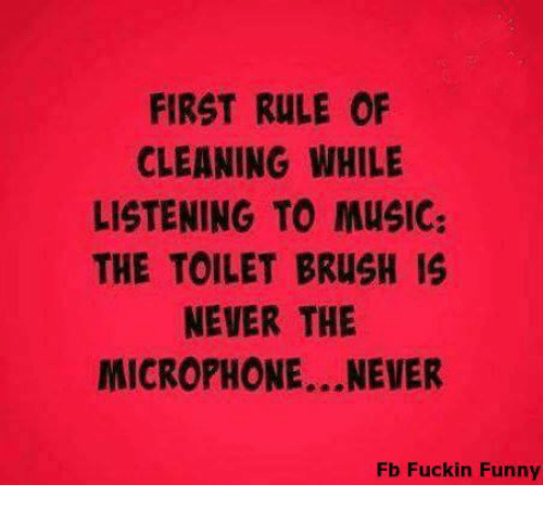First rule of cleaning while listening to music the toilet for Music to clean to