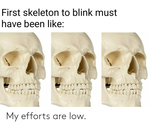 blink: First skeleton to blink must  have been like: My efforts are low.