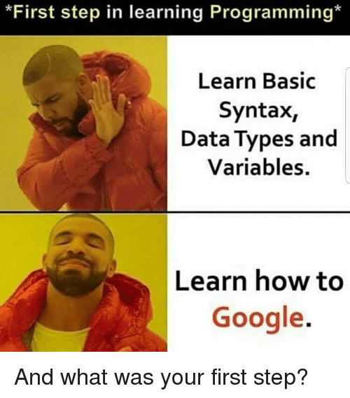 syntax: *First step in learning Programming*  Learn Basic  Syntax,  Data Types and  Variables.  Learn how to  Google. And what was your first step?