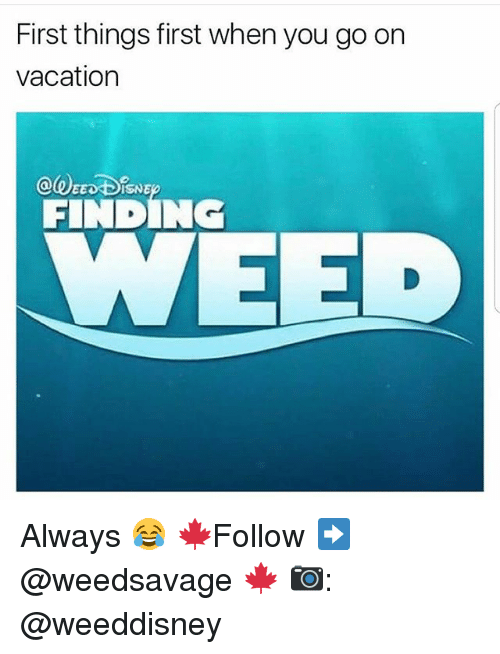 Memes, Vacation, and 🤖: First things first when you go on  vacation  ISNE  FINRIN  EED Always 😂 🍁Follow ➡ @weedsavage 🍁 📷: @weeddisney