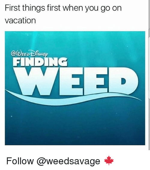 Memes, Vacation, and 🤖: First things first when you go orn  vacation  FINDING  EED Follow @weedsavage 🍁