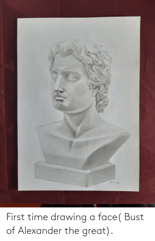 bust: First time drawing a face( Bust of Alexander the great).