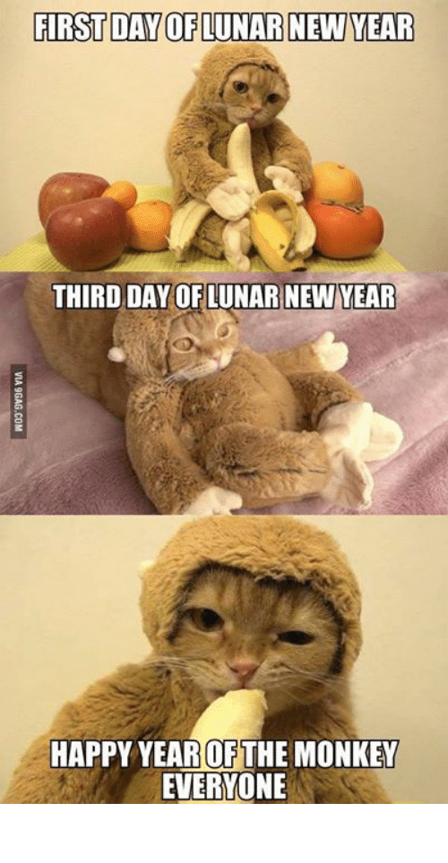 lunar new year: FIRSTDAY OF LUNAR NEW YEAR  THIRD DAY OF LUNAR NEW YEAR  HAPPY YEAR OF THE MONKEY  EVERYONE 生生猛猛,萬事順境!
