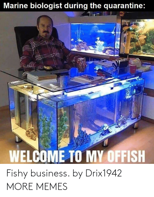 fishy: Fishy business. by Drix1942 MORE MEMES