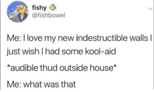fishy: fishy  @fishbowel  Me: I love my new indestructible wallsI  just wish I had some kool-aid  *audible thud outside house*  Me: what was that