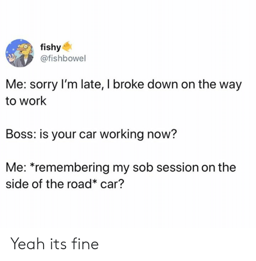 its fine: fishy  @fishbowel  Me: sorry I'm late, I broke down on the way  to work  Boss: is your car working now?  Me: *remembering my sob session on the  side of the road* car? Yeah its fine