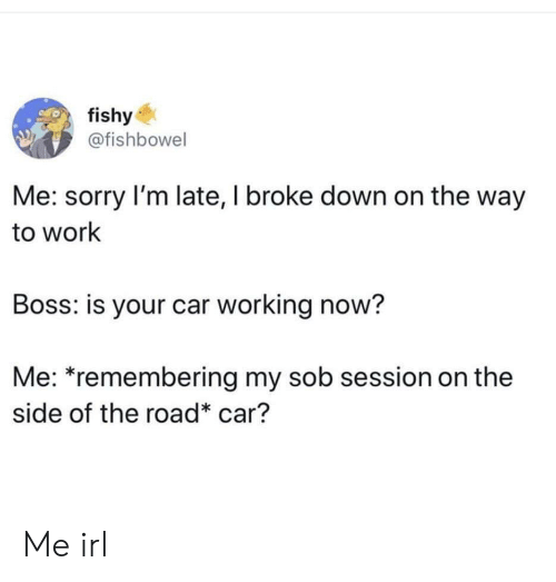 fishy: fishy  @fishbowel  Me: sorry I'm late, I broke down on the way  to work  Boss: is your car working now?  Me: *remembering my sob session on the  side of the road* car? Me irl