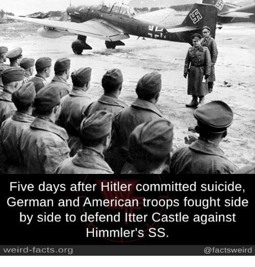 Facts, Memes, and Weird: Five days after Hitler committed suicide,  German and American troops fought side  by side to defend ltter Castle against  Himmler's SS  weird-facts.org  @factsweird