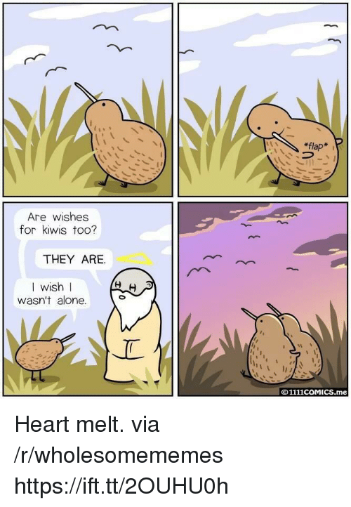 flap: *flap*  Are wishes  for kiwis too?  THEY ARE.  I wish I  WIS  wasn't alone.  © 1111COMICS.me Heart melt. via /r/wholesomememes https://ift.tt/2OUHU0h